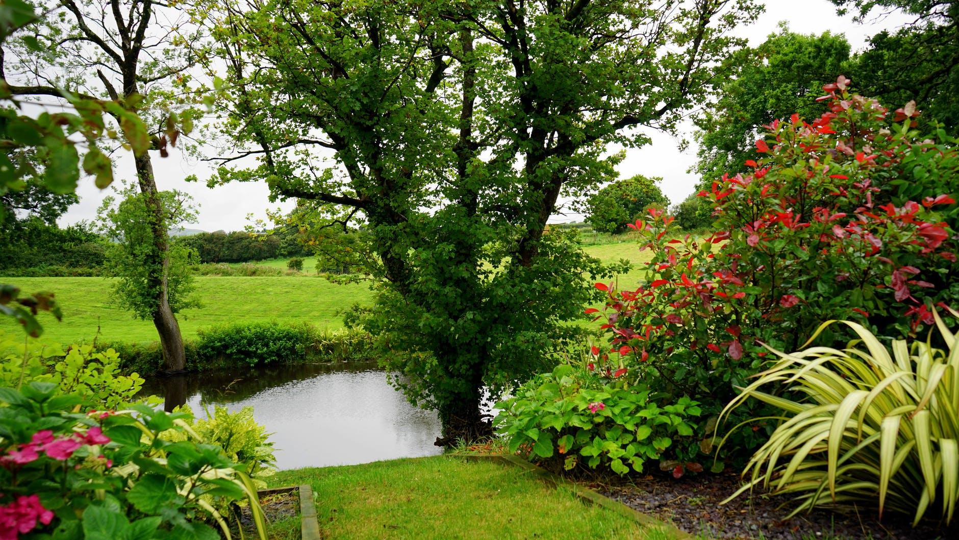 Op welke manier besproei je je tuin het fijnste?