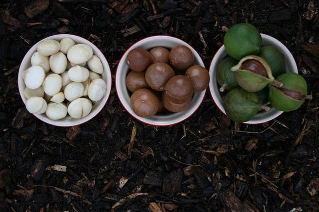 Dit is waarom macadamia noten zo goed voor je zijn